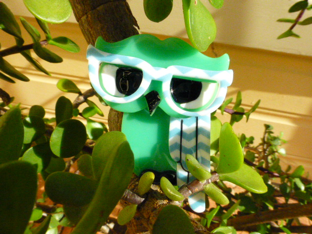 Erstwilder Waldo the Wise Owl in a Cactus