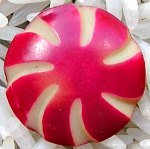 Red and Ivory Celluloid Button
